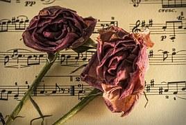 sheet-music-944796__180