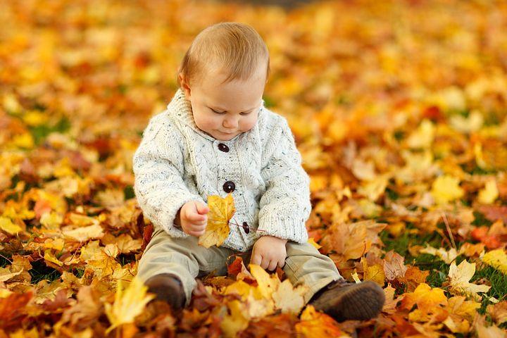 autumn-165184__480